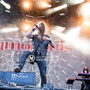 """Amorphis • <a style=""""font-size:0.8em;"""" href=""""http://www.flickr.com/photos/12855078@N07/44440146994/"""" target=""""_blank"""">View on Flickr</a>"""