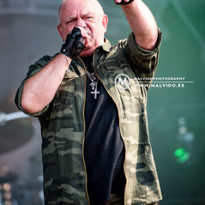"Dirkschneider • <a style=""font-size:0.8em;"" href=""http://www.flickr.com/photos/12855078@N07/45164551601/"" target=""_blank"">View on Flickr</a>"