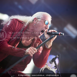 "DeeSnider • <a style=""font-size:0.8em;"" href=""http://www.flickr.com/photos/12855078@N07/35653561302/"" target=""_blank"">View on Flickr</a>"