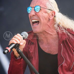 "DeeSnider • <a style=""font-size:0.8em;"" href=""http://www.flickr.com/photos/12855078@N07/35653561712/"" target=""_blank"">View on Flickr</a>"