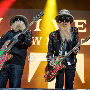 "ZZTop • <a style=""font-size:0.8em;"" href=""http://www.flickr.com/photos/12855078@N07/48355395081/"" target=""_blank"">View on Flickr</a>"