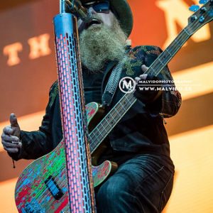 "ZZTop • <a style=""font-size:0.8em;"" href=""http://www.flickr.com/photos/12855078@N07/48355396416/"" target=""_blank"">View on Flickr</a>"
