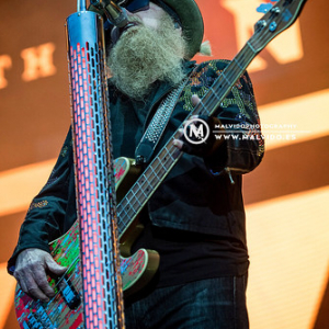 "ZZTop • <a style=""font-size:0.8em;"" href=""http://www.flickr.com/photos/12855078@N07/48355396871/"" target=""_blank"">View on Flickr</a>"