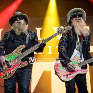 "ZZTop • <a style=""font-size:0.8em;"" href=""http://www.flickr.com/photos/12855078@N07/48355520737/"" target=""_blank"">View on Flickr</a>"