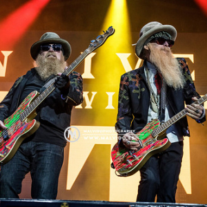 "ZZTop • <a style=""font-size:0.8em;"" href=""http://www.flickr.com/photos/12855078@N07/48355522962/"" target=""_blank"">View on Flickr</a>"