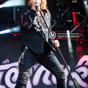 """Whitesnake • <a style=""""font-size:0.8em;"""" href=""""http://www.flickr.com/photos/12855078@N07/48355531367/"""" target=""""_blank"""">View on Flickr</a>"""