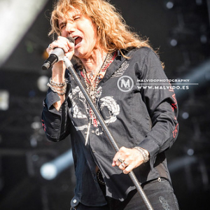 """Whitesnake • <a style=""""font-size:0.8em;"""" href=""""http://www.flickr.com/photos/12855078@N07/48355534112/"""" target=""""_blank"""">View on Flickr</a>"""