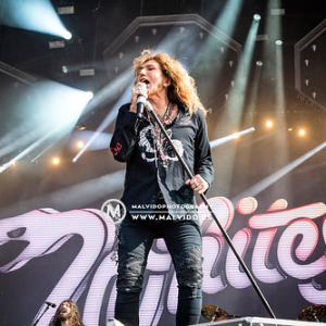 """Whitesnake • <a style=""""font-size:0.8em;"""" href=""""http://www.flickr.com/photos/12855078@N07/48355534682/"""" target=""""_blank"""">View on Flickr</a>"""